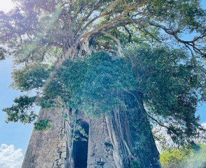 Excursions Grande Terre en 4x4 - Excursions en Guadeloupe
